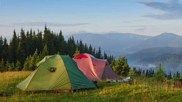 Shelter VS Telt: Fordele og ulemper ved shelter og telt