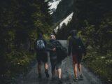 Vandretur Sjælland: Din guide til vandreture på Sjælland