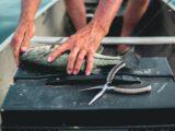 Gode fiskesteder i Østjylland: 4 gode steder