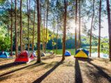 Leje af telt: Alt du skal vide
